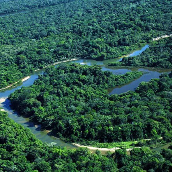 Tours-Amazonia